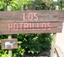 Picture of Los Potrillos